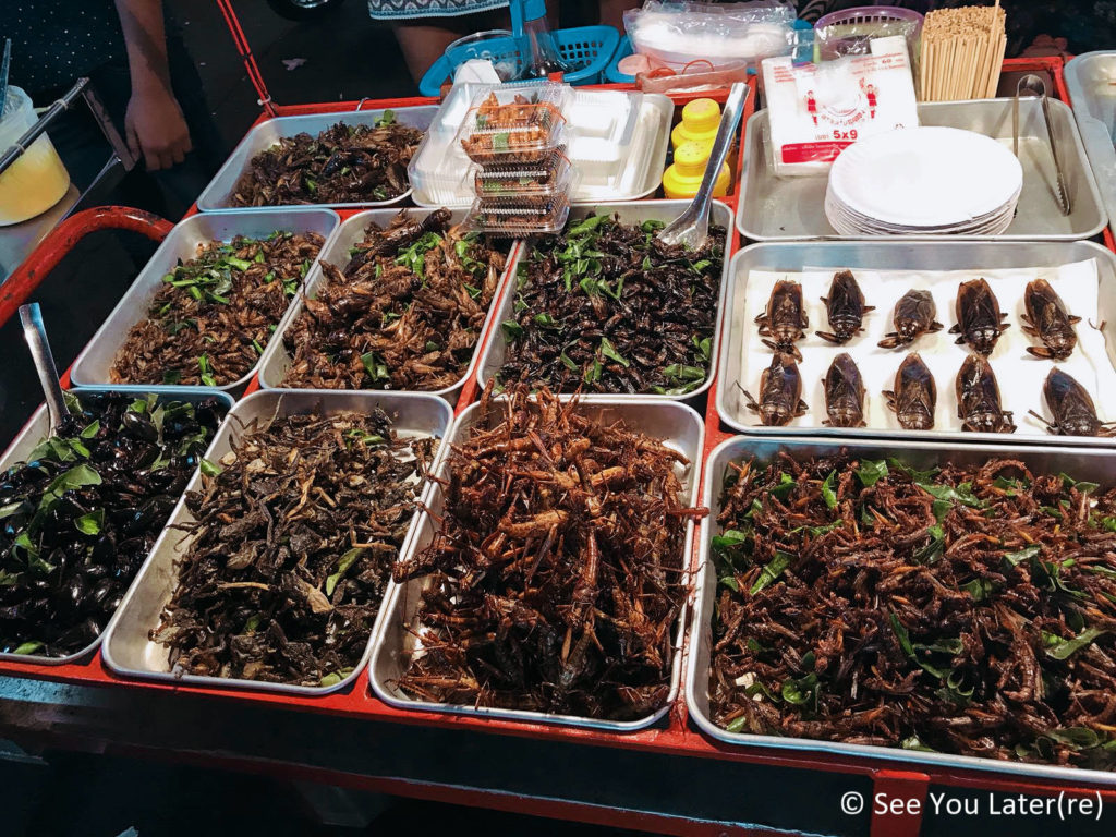stand insectes khao san road
